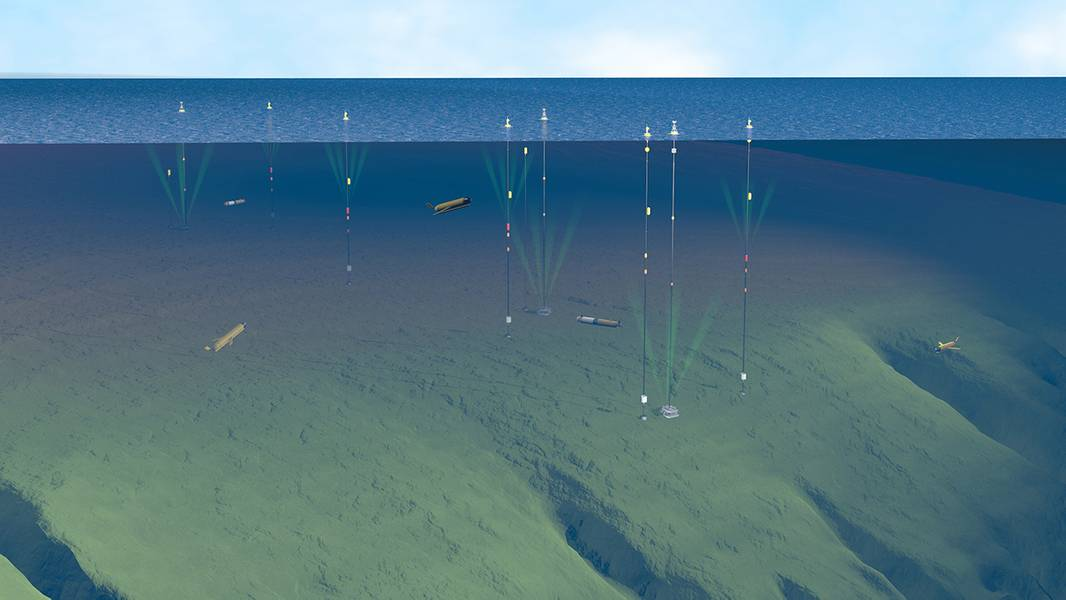 Η παράκτια σειρά Pioneer αποτελείται από τρεις τύπους αγκυροβολίων, θαλάσσια ανεμόπτερα και αυτόνομα υποβρύχια οχήματα, γεγονός που την καθιστά μία από τις πιο σύνθετες συστοιχίες του δικτύου OOI. Η αγκυροβολημένη σειρά εκτείνεται σε περισσότερα από 160 τετραγωνικά μίλια κατά μήκος της επικλινούς άκρης της υφαλοκρηπίδας της Νέας Αγγλίας. Το βιολογικά παραγωγικό «ράφι» είναι ιδιαίτερα ενδιαφέρον για τους επιστήμονες: αντιπροσωπεύει μια μεταβατική ζώνη μεταξύ σχετικά φρέσκου, θρεπτικού νερού πλησίον της ξηράς και αλατιού, πλούσιου σε θρεπτικά ύδατος νερού στο dee