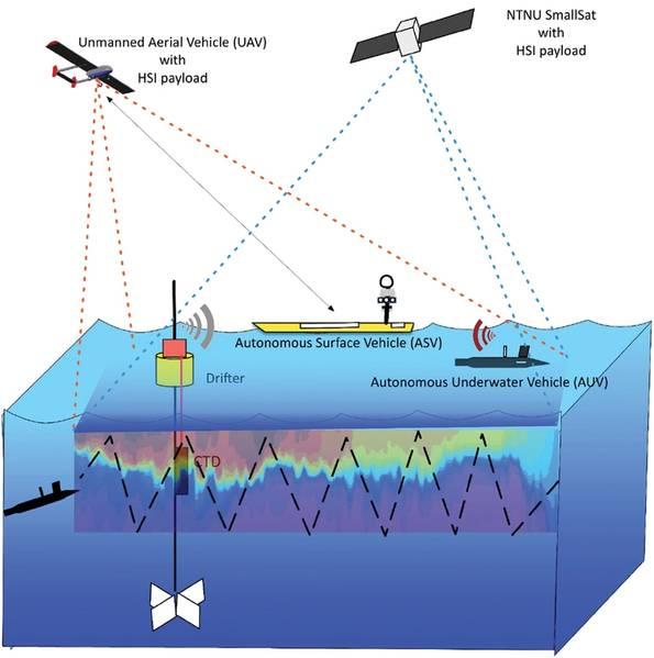 Добавление глубины: полный спектр видов на океан. Иллюстрации предоставлены профессором Канной Раджан