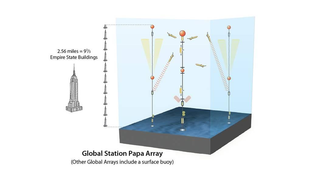 إن بناء وصيانة مصفوفة Global Arrays هو إنجاز هندسي مثير للإعجاب. تمتد المرافئ في صفائف المياه العميقة هذه إلى عدة أميال إلى قاع المحيط ، مما يجعلها صعبة بشكل خاص على التصميم والتوزيع والتعافي. كما أنها تزيد من وصول العلماء إلى أجزاء من المحيط يصعب دراسة أي طريقة أخرى. (الرسم التوضيحي لجاك كوك ، WHOI ، الخدمات الرسومية)