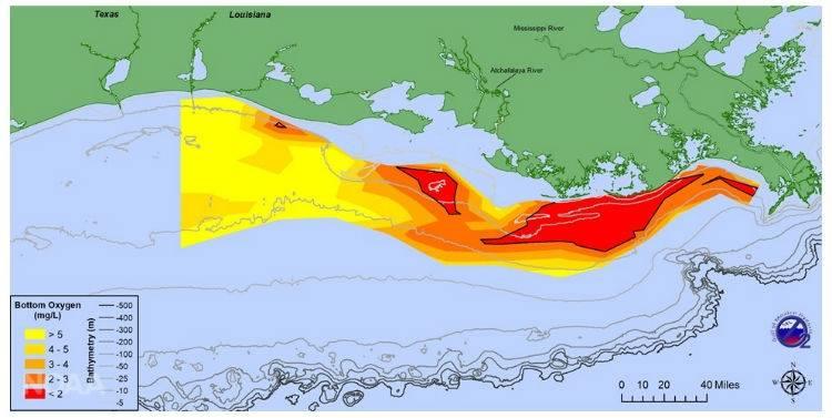 تبلغ المساحة الميتة لهذا العام في خليج المكسيك ، على مساحة تبلغ 2720 ميل مربع ، وهي مساحة حول حجم ولاية ديلاوير ، أصغر من المعدل. تُظهر الخريطة توزيع الأكسجين الذائب في المياه القاع خلال رحلة بحث من 24 إلى 28 يوليو. (N. Rabalais، LSU / LUMCON & R. Turner، LSU)