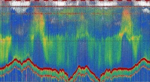 رسم بياني بسرعة 200 كيلو هرتز يظهر ثلاثة أيام من البيانات الصوتية من سطح البحر (أعلى) إلى قاع البحر (خط أحمر متموج في الأسفل) سجلته ليرا. لاحظ دورة نهارية واضحة (نهارية) من العوالق الحيوانية المهاجرة رأسياً. (الصورة: Cefas)