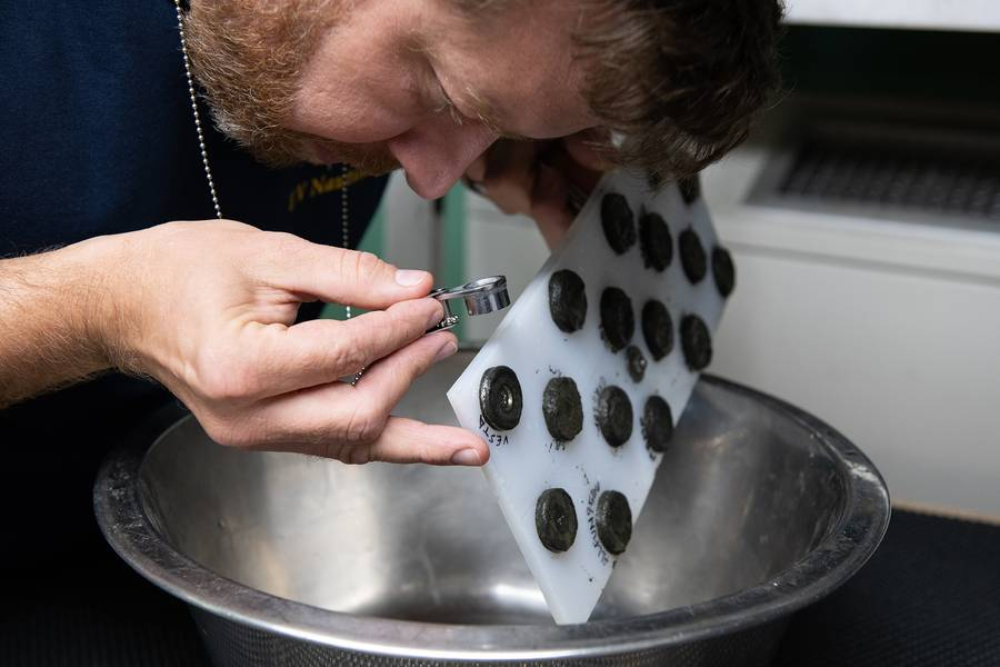 नासा के वैज्ञानिक डॉ मार्क फ्राइज ने चुंबकीय बोर्ड से जुड़े प्रारंभिक नमूना रिटर्न की जांच की। (फोटो: सुसान पोल्टन / ओईटी)