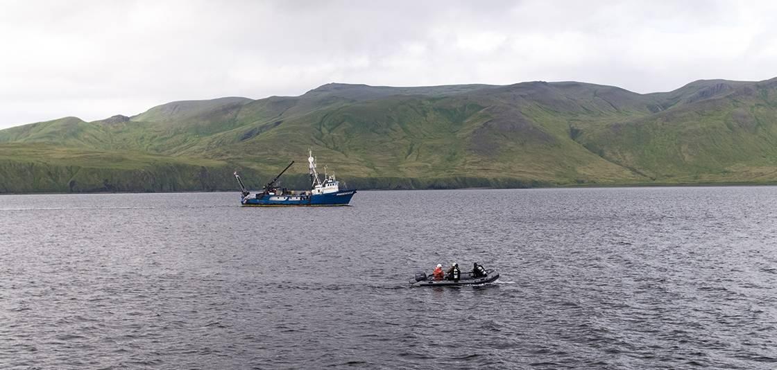 潜水队调查通过REMUS 100 AUV收集的声纳目标,RV Norseman II在后台航行(照片:NOAA)
