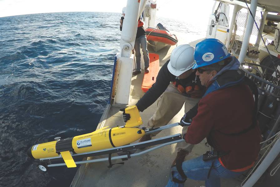 (الائتمان: Blue Ocean Monitoring)
