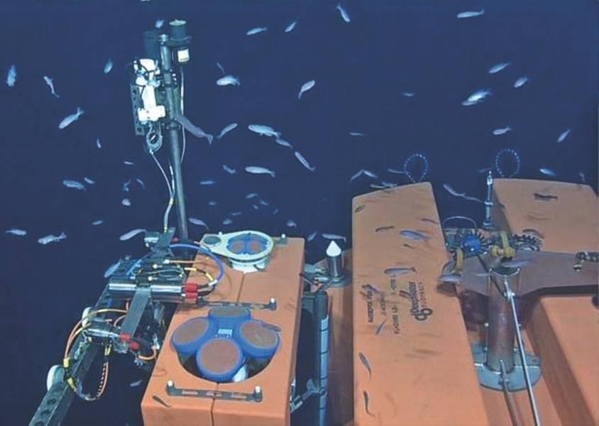 Abb. 3. In 200 m Tiefe sind zwei ADCPs (150 kHz, 5-strahl 600 kHz) auf der festen Plattform eines SPM installiert. (Credit: NSF-OOI / UW / ISS; Tauchgang R1832, VISIONS '15 Expedition)