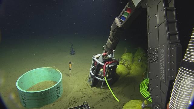 Der neue Titan Beschleunigungssensor wird in den Caisson eingesetzt (Copyright: 2018 ONC / OET / Nautilus Live)