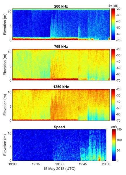 Ecogramas de retrodispersión acústica que muestran flujo de turbidez. Imagen: ASL