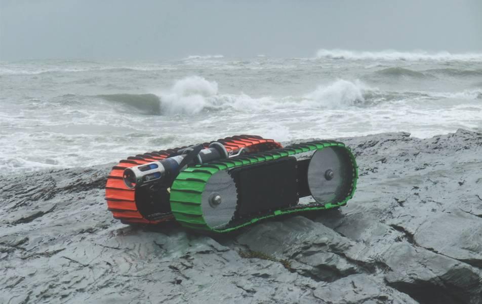 Figura 1: A esteira rolante da zona de surf da lontra do mar