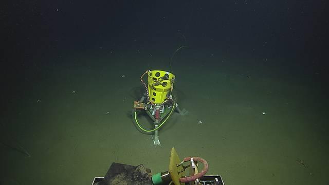 Imagenex sonar no Clayoquot Slope (Direitos autorais: 2018 ONC / OET / Nautilus Live)
