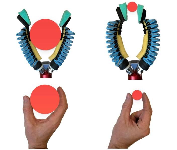 """Uma versão modificada da pinça com apenas dois dedos pode realizar tanto um """"poder de agarrar"""" para segurar objetos grandes quanto um """"aperto de pinça"""" para segurar objetos pequenos, bem como uma mão humana. (Crédito: Wyss Institute na Universidade de Harvard)"""