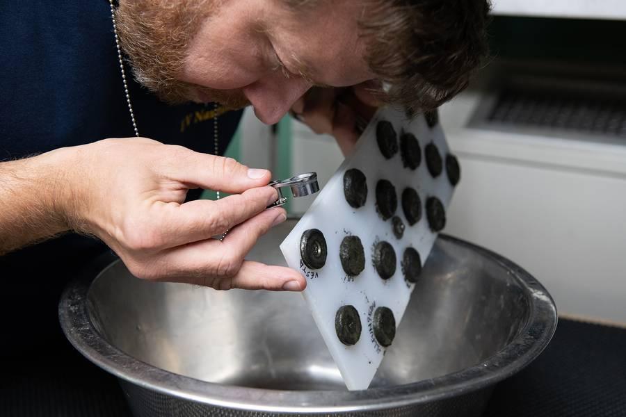 O cientista da NASA, Dr. Marc Fries, examina os primeiros retornos de amostras anexados a um quadro magnético. (Foto: Susan Poulton / OET)