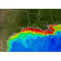 Computer modelled GofM Dead Zone: Image credit NOAA