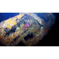 Coral-encrusted USS Abner Read stern wreckage. (Courtesy of Project Recover)