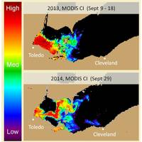 The extent of the Lake Erie algal bloom at its height in 2013 (top) and 2014 (bottom). Orange and red show concentrations that may cause scums and other issues. Different areas are affected in the two years because of wind patterns. The data came from NASA's Aqua satellite and was analyzed by NOAA's Center for Coastal Ocean Science. (Credit: NOAA)