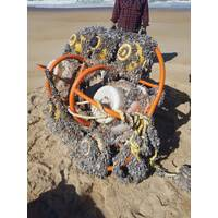 The frame and instruments as they were when they washed up. Photo: NOC