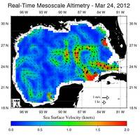 Gulf of Mexico Sea-surface altitude indicating surface current speed (Image: Louisiana State University / NOAA)
