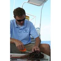 Dr. James Morris & Lionfish: Photo credit NOAA