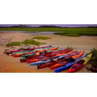 Kayaks on trail beach: Photo courtesy of Sea Coast Paddling Trail
