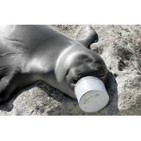 Photo: Ocean Conservancy