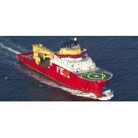 Reef's CSV Polar King