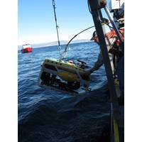 Scientists recover an ROV during fish surveys offshore the California coast (Photo by Ann Bull, BOEM)