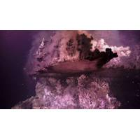 Superheated hydrothermal fluid flows upwards from an underwater volcano 2000m below the Gulf of California, Mexico (Photo: Schmidt Ocean Institute)