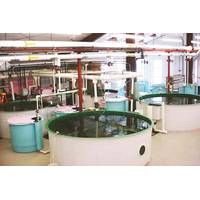 UWSP's Northern Aquaculture Demonstration Facility (Photo: University of Wisconsin Stevens Point)