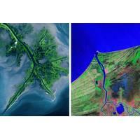 A variety of deltas: the Mississippi birdfoot delta (left) and Mexico's Grijalva cuspate delta (right). (Image: NASA Landsat)