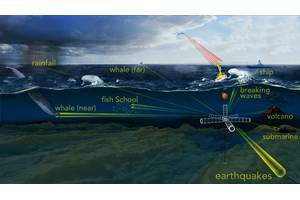 """To probe the ocean's opaque interior, sound is one of the most efficient tools available. WHOI scientists have developed an """"acoustic telescope"""" to """"see"""" into a noisy ocean and pick out unique sounds produced by distant acoustic phenomena, such as whale calls and fish schooling, as well as the rumble of earthquakes, volcanoes, and storms© Woods Hole Oceanographic Institution, N. Renier"""