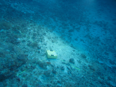 (File Photo: Seabed Geosolutions)
