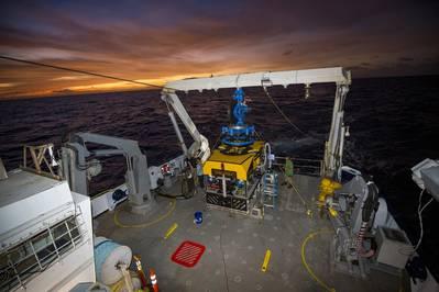 Image courtesy Schmidt Ocean Institute