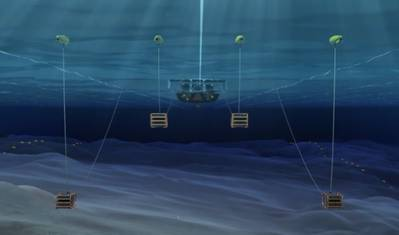 (Image: Shearwater GeoServices)