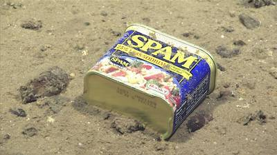 Metal debris – a food tin found at 4,947 meters (3.07 miles) depth in Sirena Canyon off the Mariana Islands. Image courtesy of the NOAA Office of Ocean Exploration and Research, 2016 Deepwater Exploration of the Marianas. (Photo: NOAA)