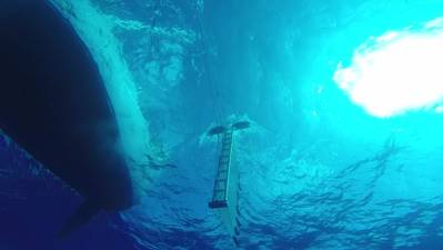Part of the objects in the Patch are underwater, so the Optech CZMIL's depth-penetration capability was crucial for surveying. (Image courtesy The Ocean Cleanup)