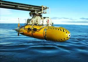 Crédito da foto: Centro Nacional de Oceanografia