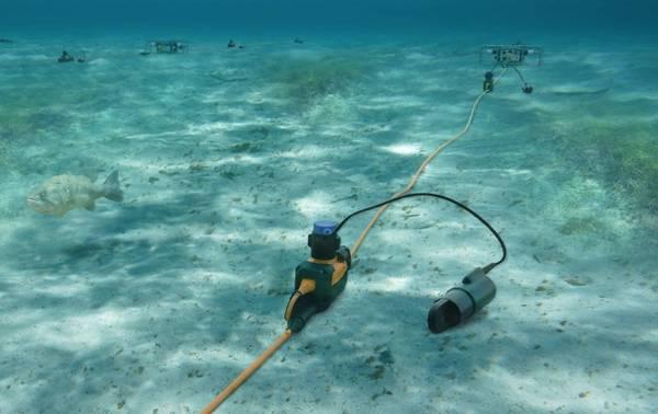 湿地帯と水深25mまでのSercel 508XT移行ゾーンシステム(Sercelの画像提供)