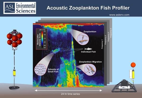 音響動物プランクトンフィッシュプロファイラー(AZFP)の係留構造とデータ時系列の例(写真:ASL環境サービス)