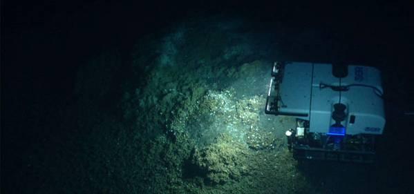 Imagem cortesia do programa NOAA Okeanos Explorer