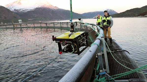 SINTEF Oceanは、ノルウェーのトロンハイムにある施設で試験を開催しました。 SINTEFオーシャンからの画像。