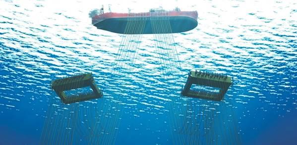 (图片:海底7)