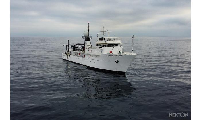 DSSV Pressure Drop at sea Credit NEKTON