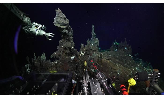 (Photo: Schmidt Ocean Institute)