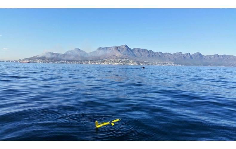 Slocum glider off Cape Town (Photo: BOM)