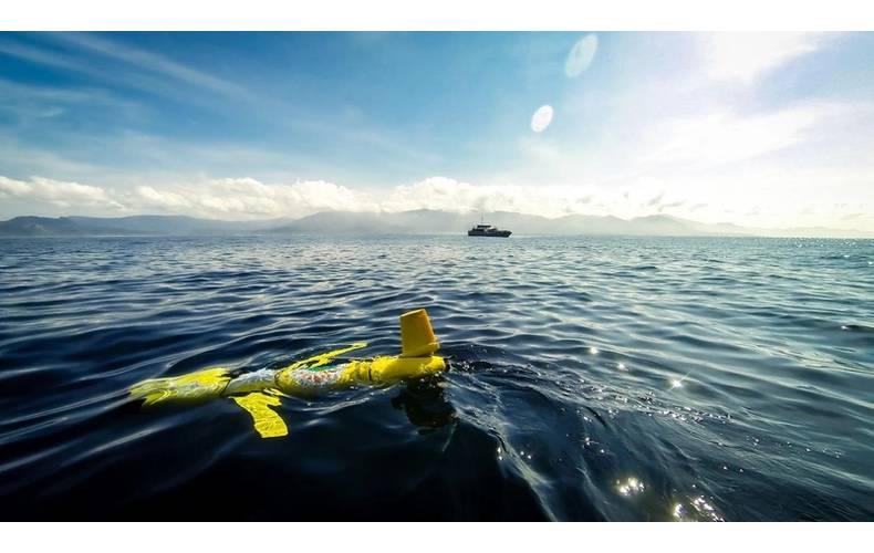 The Slocum Glider deployed off Sumbawa (Photo: BOM)