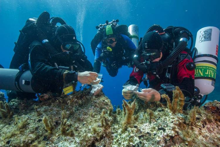 Antikythera team members Nikolas Giannoulakis, Theotokis Theodoulou, and Brendan Foley inspect small finds from the Shipwreck while decompressing after a dive to 50 m (165 feet). (Photo by Brett Seymour, EUA/WHOI/ARGO)