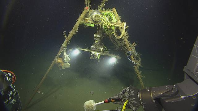 Biofouled camera platform at Barkley Canyon (Copyright: 2018 ONC/OET/Nautilus Live)