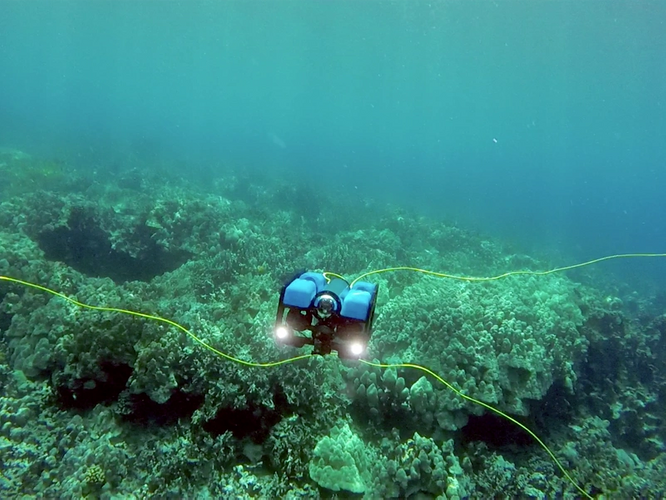 BlueROV2 – Honaunau Bay (Photo: Blue Robotics)