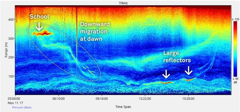 Echogram of diel plankton migration. (Image: Nortek)