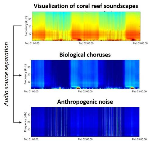 An example of using machine learning in separating biological choruses and shipping noise from coral reef soundscapes. Each panel shows the time-frequency representations of acoustic data, and the color shows the intensity of acoustic signals. © Marine Ecoacoustics and Informatics Lab
