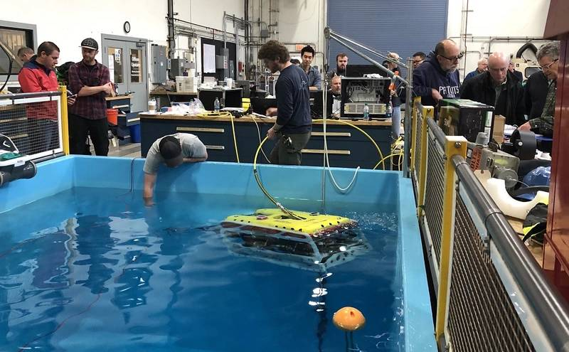 Falcon during training at WHOI's test tank facility in Woods Hole, Mass.  (Photo by Derek Buffitt, Woods Hole Oceanographic Institution)
